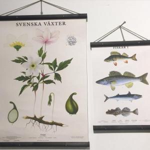 Planschhängare Svart - Nostalgiska.se